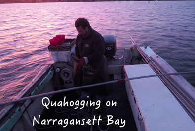 Quahogging on Narragansett Bay